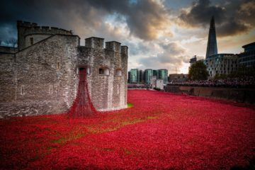 Weeping Window Liverpool November