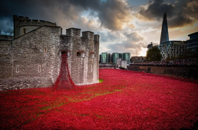 Tower Of London Weeping Window Poppies Coming To Liverpool